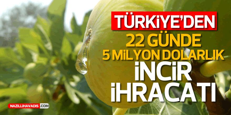 Türkiye'den 22 günde 5 milyon dolarlık incir ihracatı