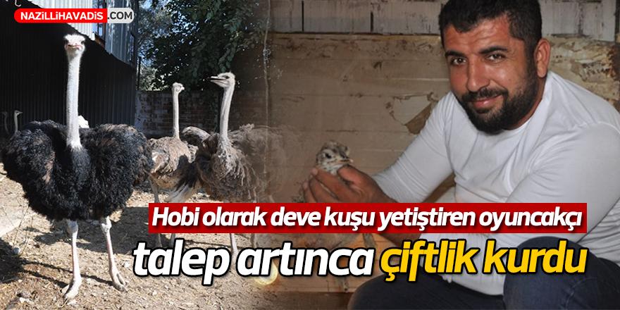 Hobi olarak deve kuşu yetiştiren oyuncakçı, talep artınca çiftlik kurdu