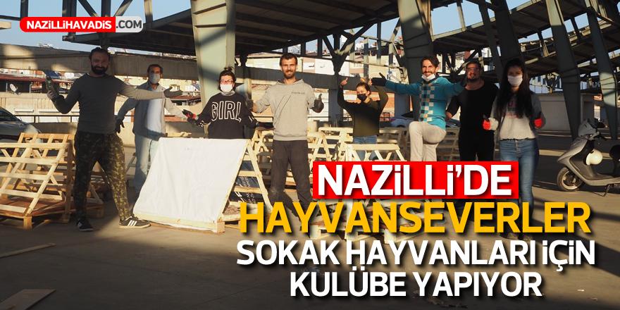 Nazilli'de hayvanseverler sokak hayvanları için kulübe yapıyor