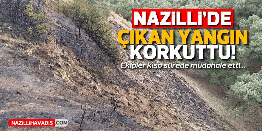 Nazilli'de korkutan yangın