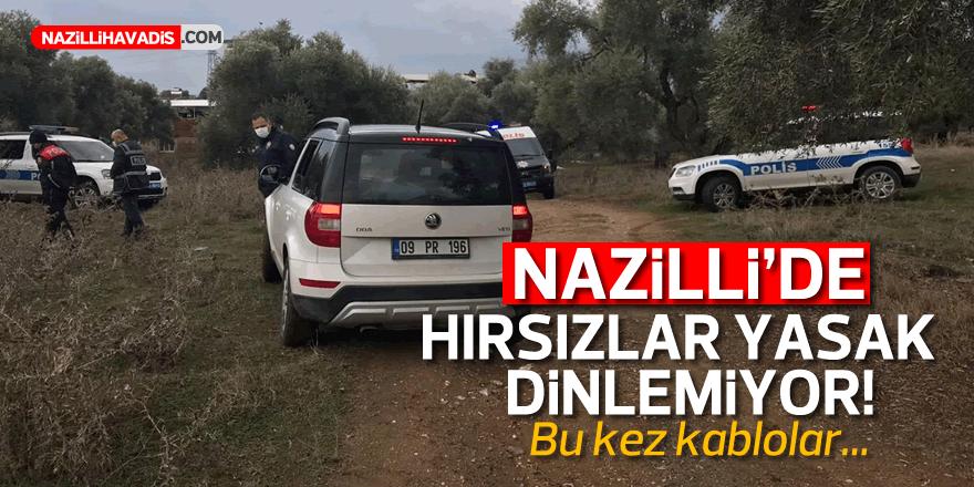 NAZİLLİ'DE HIRSIZLAR KOL GEZİYOR!