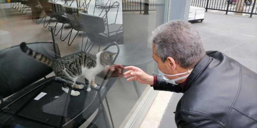 İş yerinde mahsur kalan kedi kurtarıldı