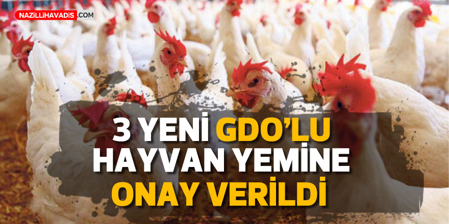 Tarım ve Orman Bakanlığı'ndan 3 yeni GDO'lu hayvan yemine onay