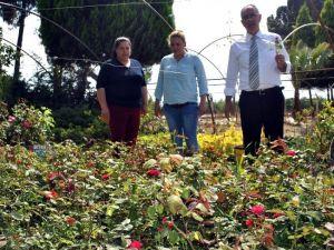 İncirliova Belediyesi Kendi Fidanlığını Kurdu