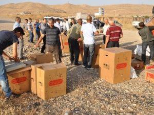 Cizre'de Arı Yetiştiricilerine Arılı Kovan Dağıtıldı