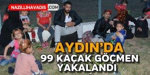 Aydın'da göçmen operasyonu