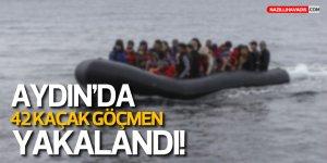 Normalleşiyoruz (!) Aydın'da 42 sığınmacı yakalandı