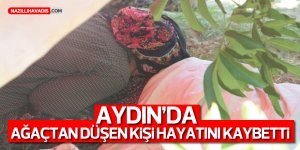 Aydın'da ağaçtan düşen kişi hayatını kaybetti