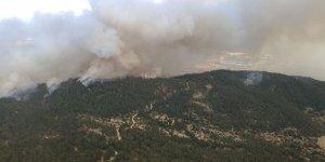 Çine'de orman yangını söndürüldü