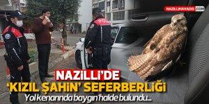 """Nazilli'de """"Kızıl Şahin"""" seferberliği"""