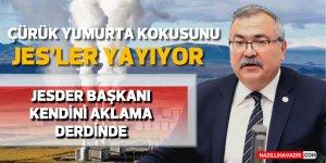 """CHP'li Süleyman Bülbül: """"Çürük yumurta kokusunun nedeni JES"""""""