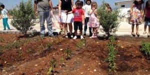 Didim Anaokulu Öğrencileri Organik Bahçe Oluşturdu