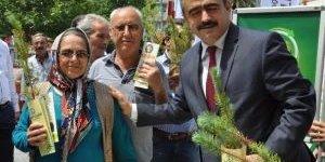 Başkan Alıcık, Dünya Çevrecilik Gününde Fidan Dağıttı